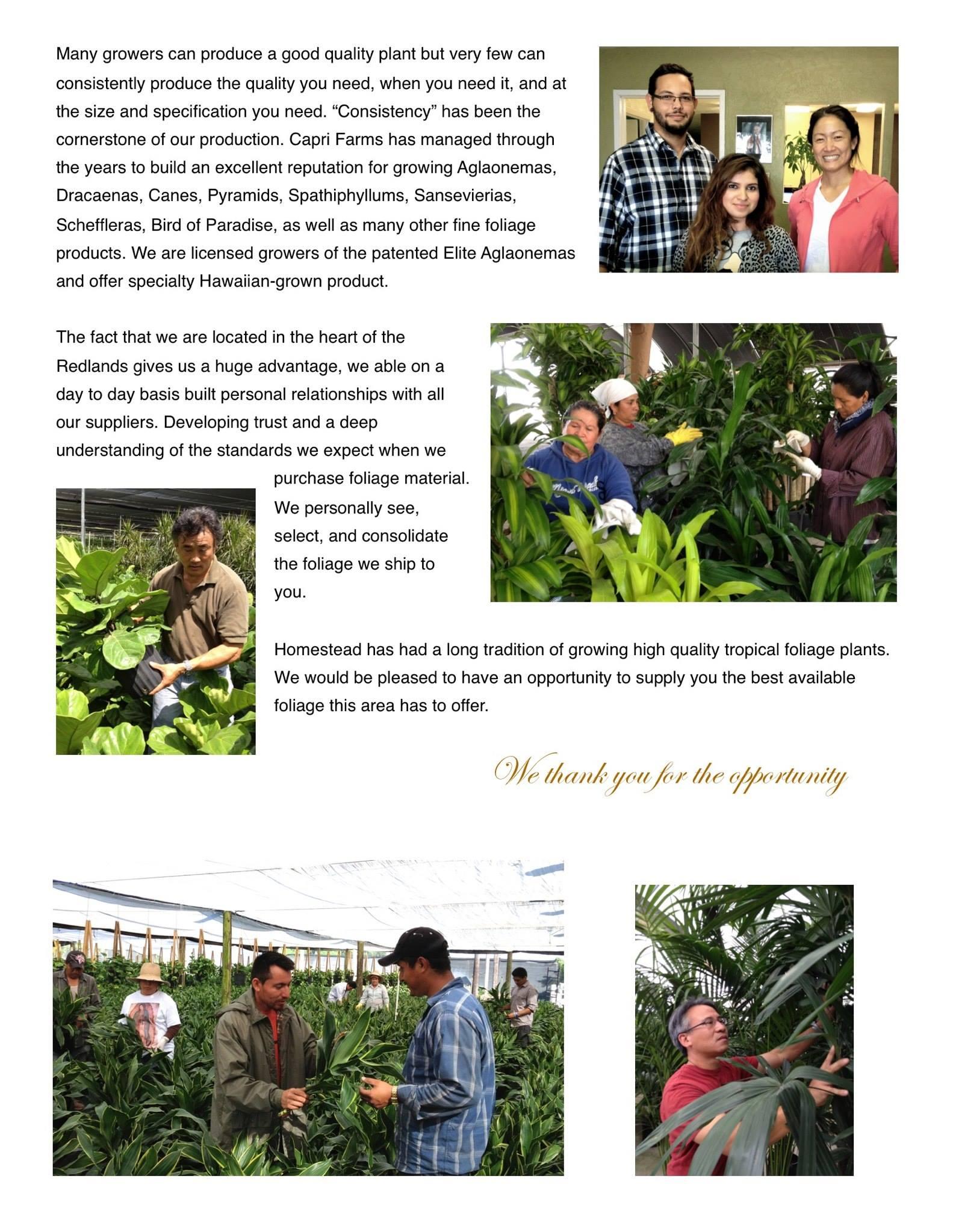 Capri Farms Slideshow - Page 03