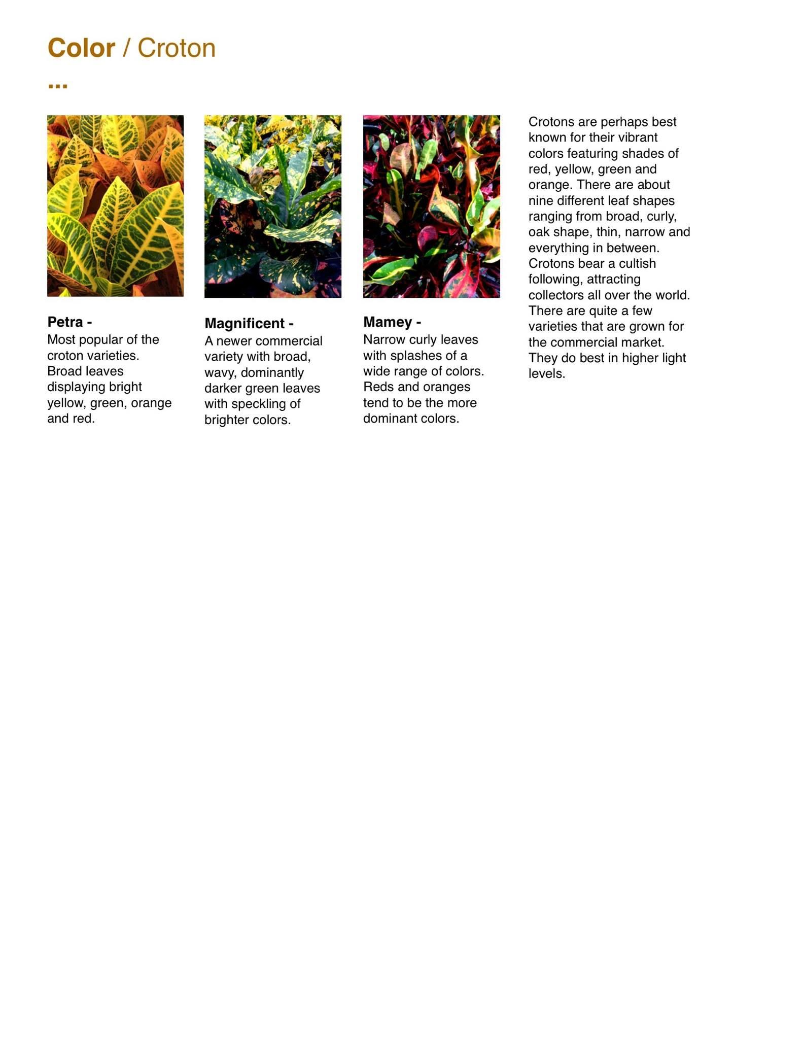 Capri Farms Slideshow - Page 32